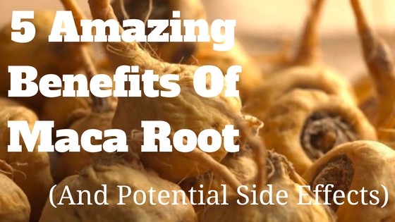 organix maca root benefits